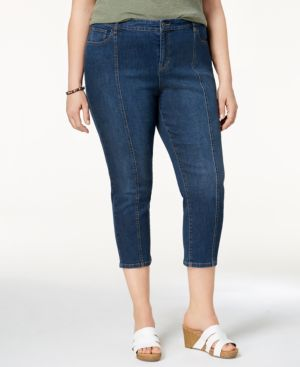 Style & Co Plus Size Seamed Skinny Capri Jeans, Created for Macy's 5644487