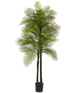 Nearly Natural 7 Double Robellini Palm UvResistant IndoorOutdoor Tree