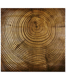 INK+IVY Wood Grain Metallic Canvas Print