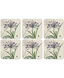 Pimpernel RHS Agapanthus Set of 6 Coasters