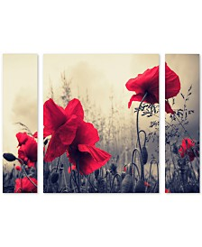 "Philippe Sainte-Laudy 'Red For Love' Multi Panel Art Set Large - 41"" x 30"" x 2"""
