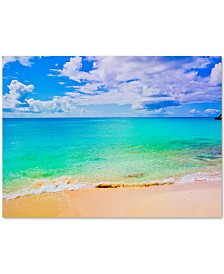 "Preston 'Maho Beach' Canvas Art - 47"" x 35"""