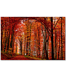 "Philippe Sainte-Laudy 'The Red Way' 30"" x 47"" Canvas Wall Art"