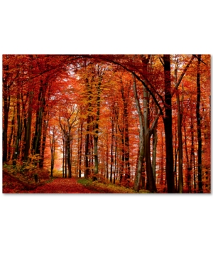 Philippe Sainte-Laudy The Red Way 30 x 47 Canvas Wall Art