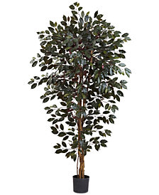 Nearly Natural 6' Artificial Capensia Ficus Tree
