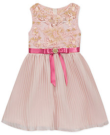 Rare Editions Little Girls Embroidered Pleated Chiffon Dress