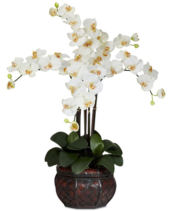 Nearly Natural - Phalaenopsis Orchid Artificial Flower Arrangement in Decorative Vase
