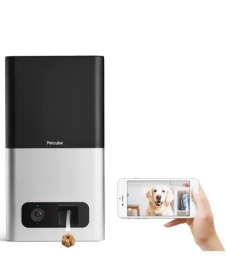 Petcube - Bites Indoor 1080p Wi-Fi Pet Camera - Carbon Black