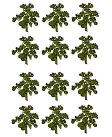 12-Pc. Sedum Succulent Artificial Plant Set