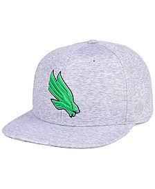 Top of the World North Texas Mean Green Solar Snapback Cap