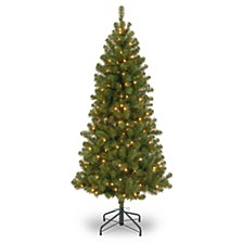 7' Canadian Grande Fir Tree with 300 Clear Lights