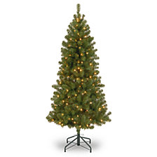 National Tree 7' Canadian Grande Fir Tree with 300 Clear Lights