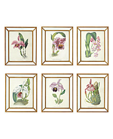 Orchidees Set of 6 Orchid Wall Art Prints in Mirror Frame with Antiqued Gold Trim