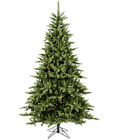 8.5' Camdon Fir Artificial Christmas Tree with 950 Warm White LED Lights