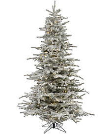 Vickerman 7.5' Flocked Sierra Fir Artificial Christmas Tree with 750 Warm White LED Lights