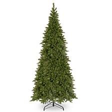 12' Tiffany Fir Slim Tree