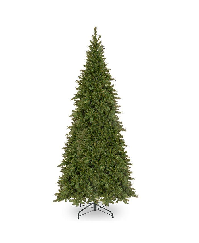 National Tree Company - 12' Tiffany Fir Slim Tree
