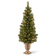 "4' Montclair Spruce Entrance Tree in 10"" Black/Gold Plastic Pot with 50 Clear Lights"