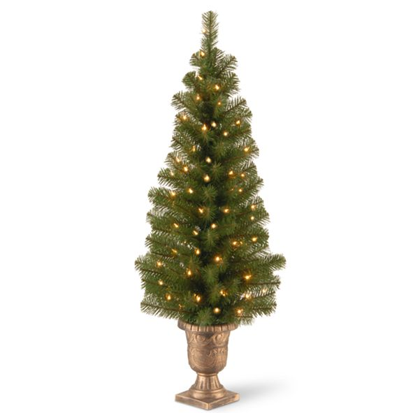 "National Tree Company 4' Montclair Spruce Entrance Tree in 10"" Black/Gold Plastic Pot with 50 Clear Lights"