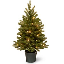 National Tree 3 ft. Jersey Fraser Fir Tree with Battery Operated Warm White LED Lights