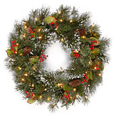 "National Tree Company 24"" Wintry Pine Wreath with Cones, Red Berries, Snowflakes and 50 Clear Lights"