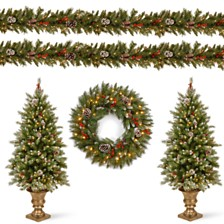 "National Tree Company Frosted Berry Assortment-  2x 4' Entrance Trees with  Clear Lights + 24"" Wreath with Warm White Battery Operated Lights w/Timer + 2 x 9'x10"" Garland with Clear Light"