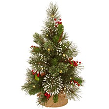 """18"""" Wintry Pine Small Tree with Cones, Red Berries and Snowflakes in Burlap Base with 15 Warm White Battery Operated LED Lights w/Timer"""