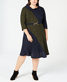 Robbie Bee Plus Size Belted Colorblocked Sweater Dress