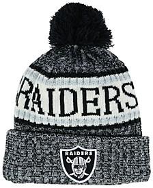 Boys' Oakland Raiders Sport Knit Hat