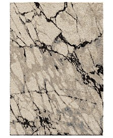 Palmetto Living Carolina Wild Great Falls Natural Area Rugs