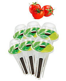 Goodful™ by AeroGarden Cherry Tomato 6-Pod Seed Kit