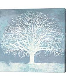 Aqua Oak by Alessio Aprile Canvas Art