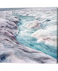 Athabasca Glacier Co By Ric Ergenbright / Danita Delimont Canvas Art