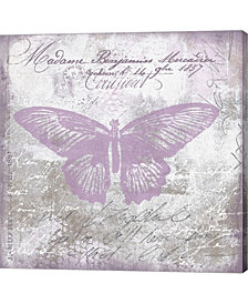 Vintage Butterfly M By Andrea Haase Canvas Art