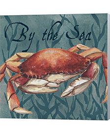Nautical Critters 3 by Tre Sorelle Studios Canvas Art