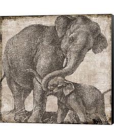 Elephant 2 By Color Bakery Canvas Art