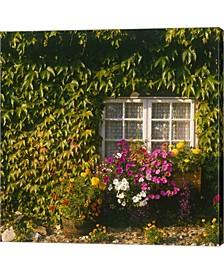 Cottage Devon Englan By Paul Thompson / Danita Delimont Canvas Art