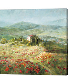 Summer In Provence By Danhui Nai Canvas Art