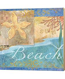 Seashells Ii By Fiona Stokes-Gilbert Canvas Art