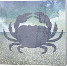 Beach Signs Crab By Lightboxjournal Canvas Art