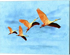 Blue Bird 2A2 By Ata Alishahi Canvas Art
