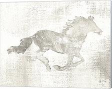 Mustang Study Neutral by Studio Mousseau Canvas Art