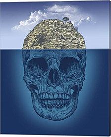 Skull Island by Rachel Caldwell Canvas Art