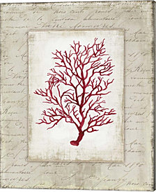 Red Coral Iii Border By Aimee Wilson Canvas Art