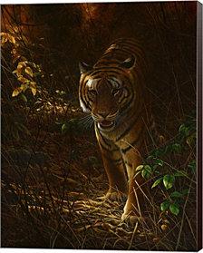 Tiger Odyssey By Dr. Jeremy Paul Canvas Art
