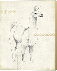 Llama Land XI by Avery Tillmon Canvas Art