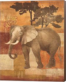 Animals on Safari IV by Albena Hristova Canvas Art