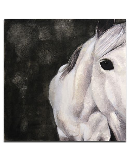 "Ready2HangArt 'Snow Horse' Canvas Wall Art, 20x20"""