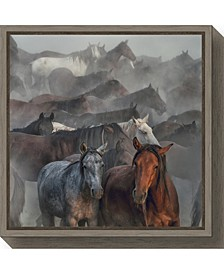 Two Horses by Huseyin Taskin Canvas Framed Art