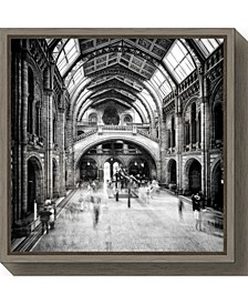 Natural History Museum of London Canvas Framed Art